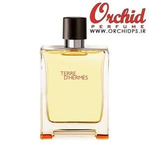 Hermes Terre dHermes Eau De Toilette 100ml-www.orchidps.ir