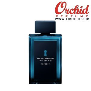 The Secret Night Antonio Banderas for men